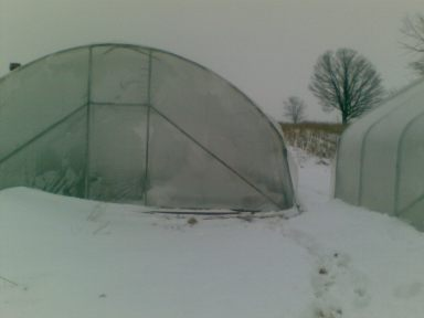 The Winter Garden - Outside the Cool Frame Hoop-House