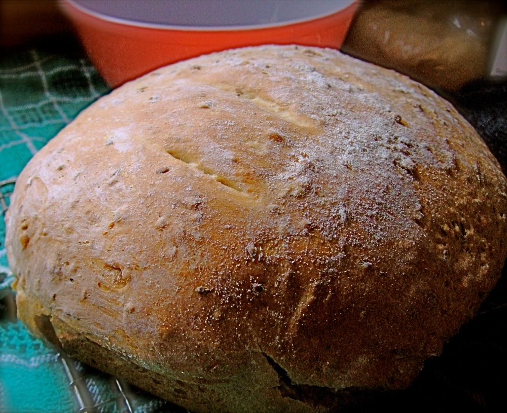 Organic Red Fife, Rustic Bread - Bread Machine and Oven Baked