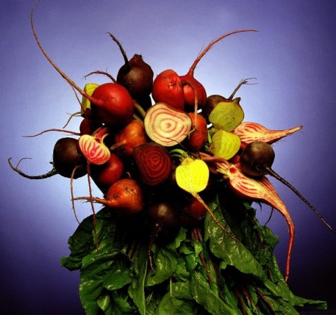 Variety of Beets